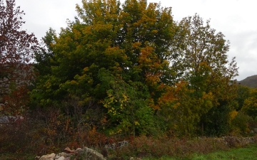 Treitoiro_ruta_las-verdes_2015_0005