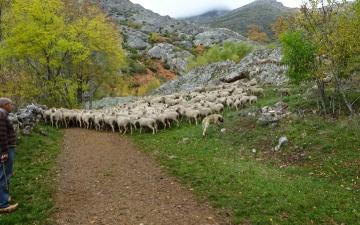 Treitoiro_ruta_las-verdes_2015_0009